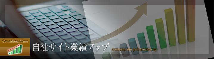自社サイト業績UP